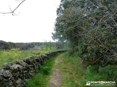 Molinos Río Perales; viajes agosto; senderismo cercedilla; excursiones organizadas desde madrid;bel